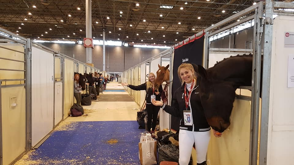 Salon Cheval 2018